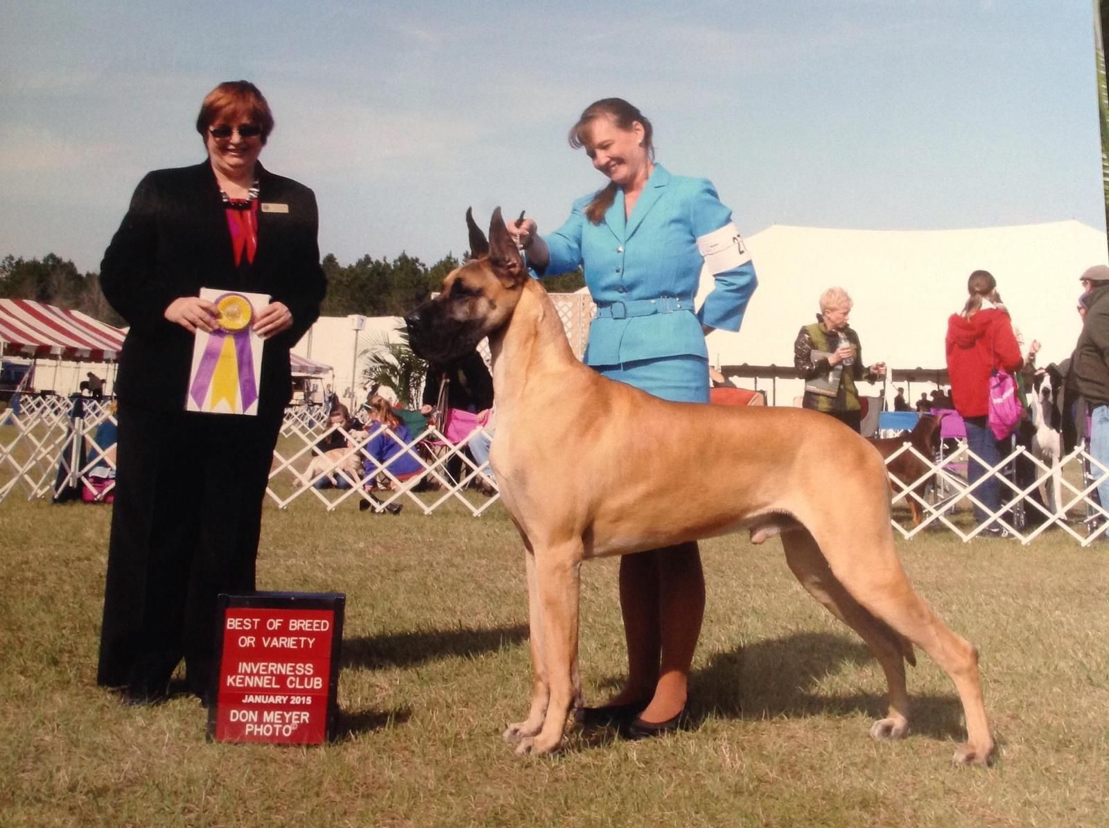 Braewynd Danes Jimmy And Handler Laura Lynn Piles With Images