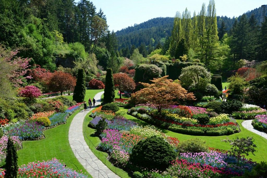 How Much Is Admission To Butchart Gardens