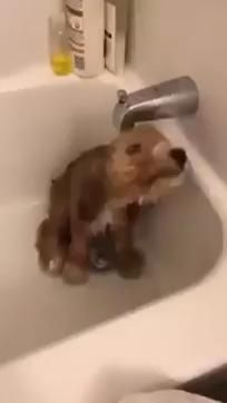 Just taking a shower!