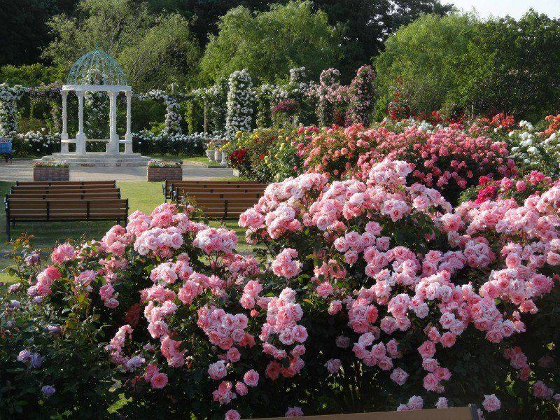 El Blog de La Tabla Jardines y Paisajes *-*JARDINES -GARDENS - paisajes jardines