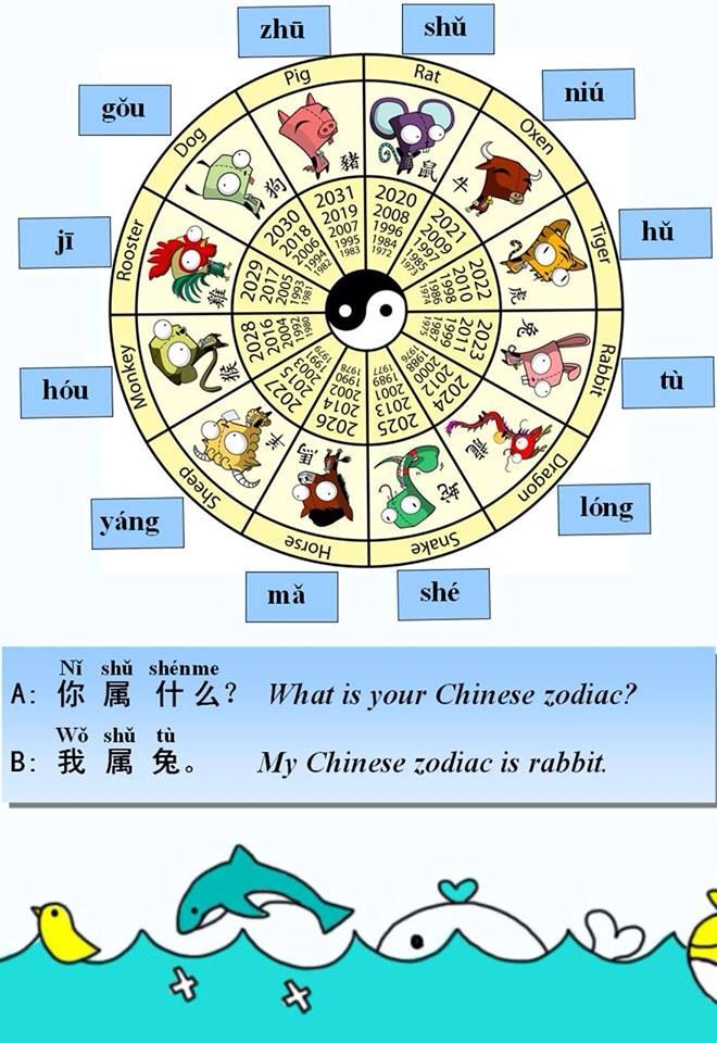 Wordoor Chinese Chinese Zodiac I Ni Shu Shenme