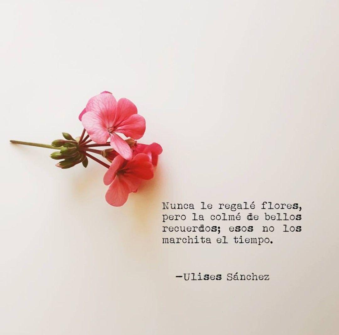 Bueno Si Te Regale Algunas Flores Pero Lo Más Importante