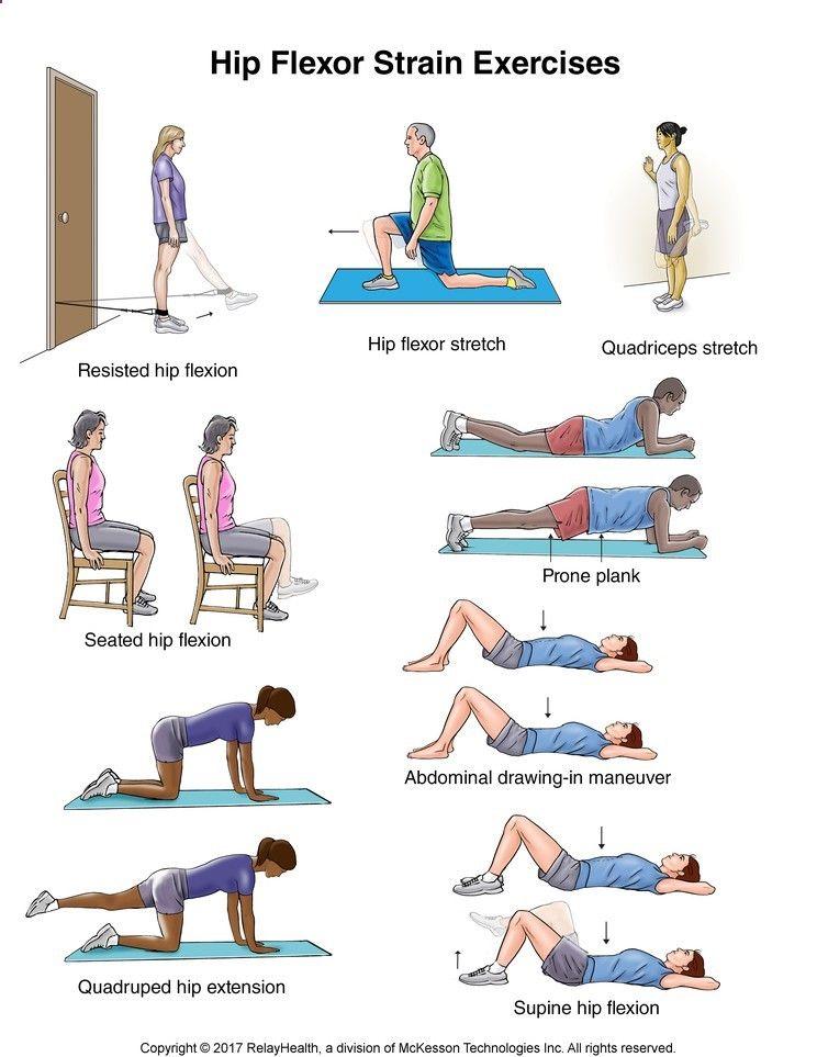 Hip Flexor Strain Exercises Illustration Exercises
