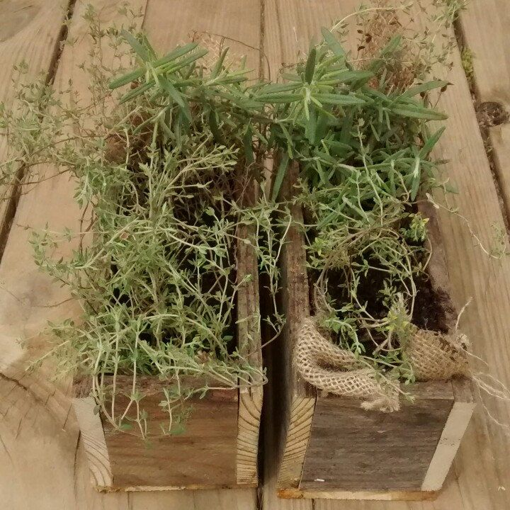 Just In Time For Spring, Our Repurposed Pallet Boxes