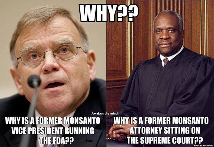 Michael R Taylor Http En Wikipedia Org Wiki Michael R Taylor Clarence Thomas Http En Wikipedia Org Wiki Clarence Thomas Politics Truth Monsanto