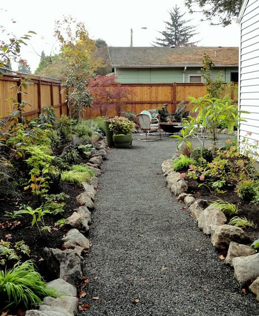 Side garden no lawn from danger garden a gardener moved - No grass backyard ideas ...