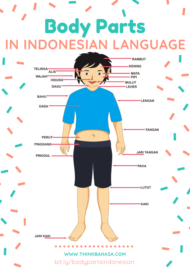 Pin di Indonesian Language Resources