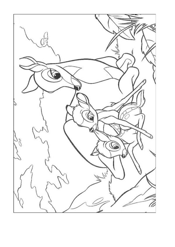 Dibujos para Colorear Disney 175 | Dibujos para colorear para niños ...