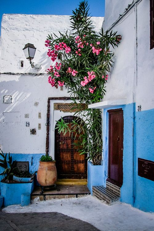 Bright blue in Rabat, Morocco by Salvatore Mazzeo/ the most in timid corner in your garden- the best place to get inspired.