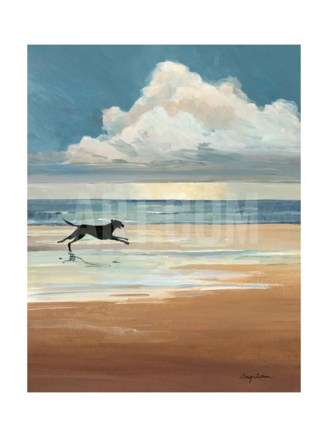 Low Tide | Boys\' rooms | Pinterest