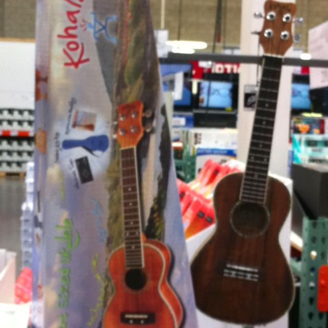 Kohala Ukulele At Costco Irvine 99 Sounds Great Ukulele Sounds Great Irvine