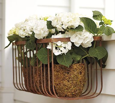 The Open Style Of Our Wire Window Box Has The Advantage Of Being Lightweight Airy And Easy To Change Simply Add Iron Planters Wall Mounted Planters Planters