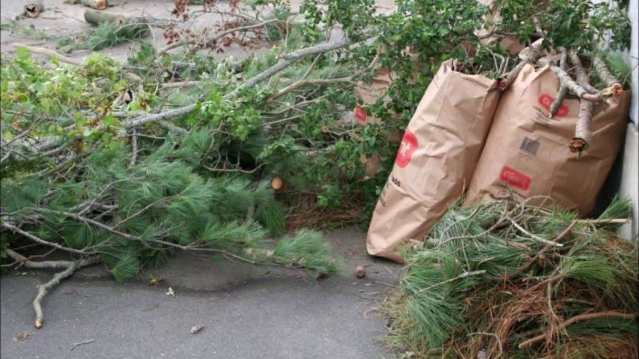yard waste removal yard waste trees branches omaha ne omaha junk disp yard waste removal waste removal yard waste yard waste removal yard waste trees