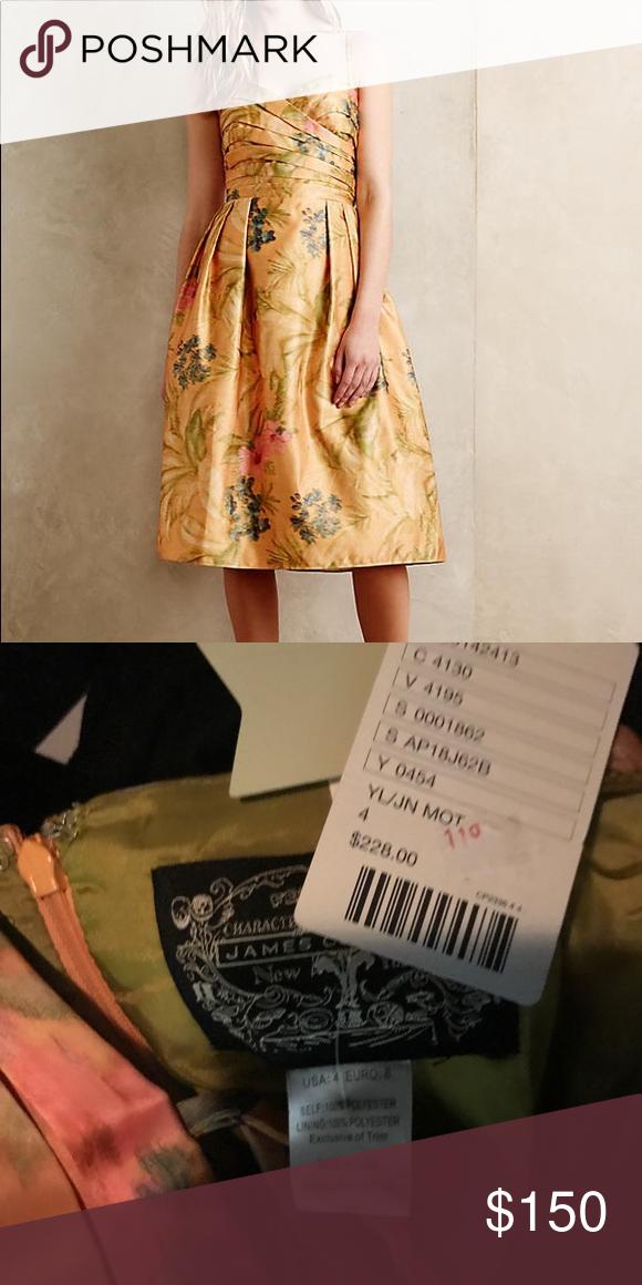 Botanica Dress Imbued with New Yorkbased designer James