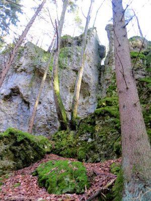 Felsenrunde bei Allersdorf und Kleingesee am 27.12.2015 http://marathomy.blogspot.com/2015/12/felsenrunde.html #Bavaria #Germany