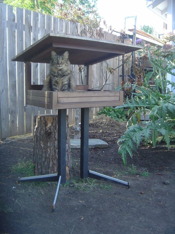52 Diy Outdoor Cat House Ideas For Winters And Summer Outdoor Cat House Cat House Diy Outdoor Cats