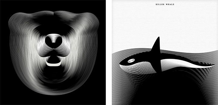 Milan-based designer Andrea Minini (previously) recently completed a new series of animals illustrated with textured moiré patterns, creating an unusual intersection between natural forms and mathematics. It's curious to see how the patterns give each illustration a great sense of motion, c
