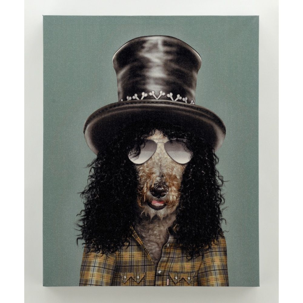 Empire Art Pets Rock 'Gnash' High Resolution Giclee Printed Canvas
