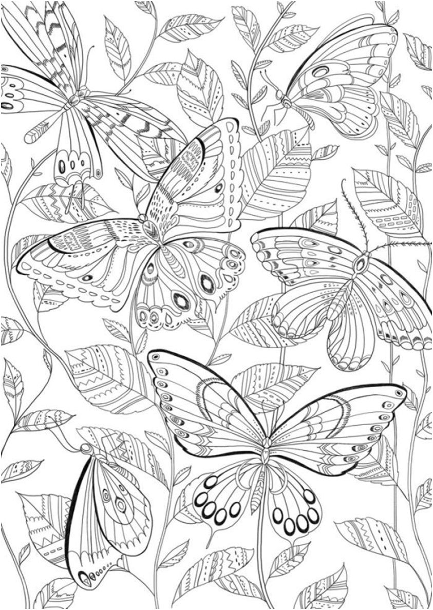 Pin On Coloring Pages And Printables