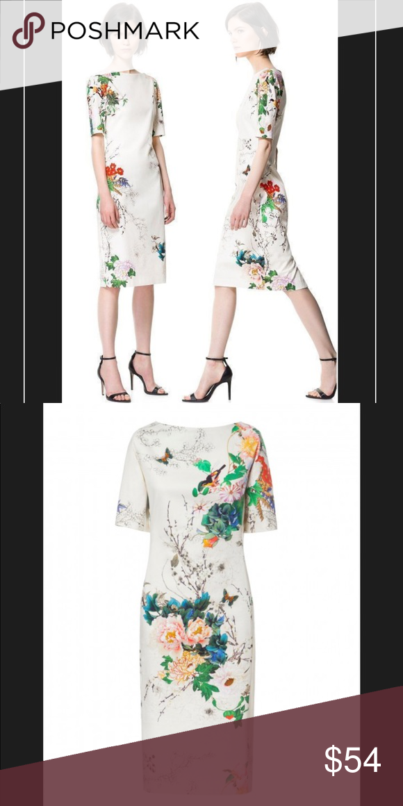 7dbbe575 Zara Japanese Asian Floral Print Shift Midi Dress Gorgeous Zara dress worn  once for Anniversary dinner