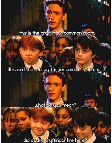 The Hangover Harry Potter Lol Harry Potter Memes Hilarious Harry Potter Memes Harry Potter Funny