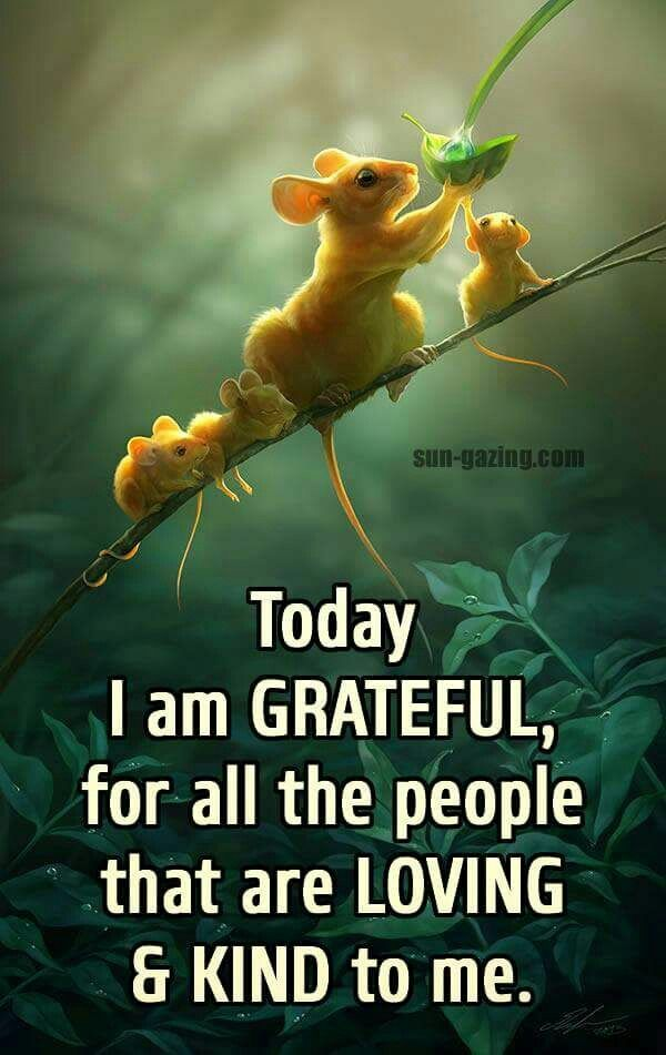 Pin by Phyllis on Quotes Attitude of gratitude, Good