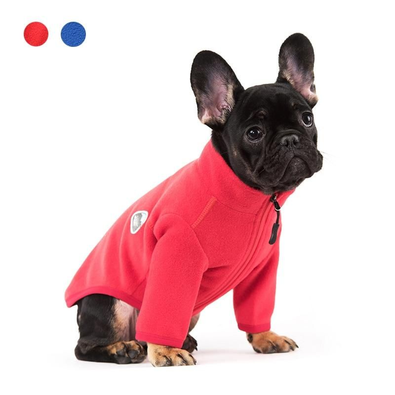 French Bulldog Puppies Wearing Supreme Special Edition Sweater