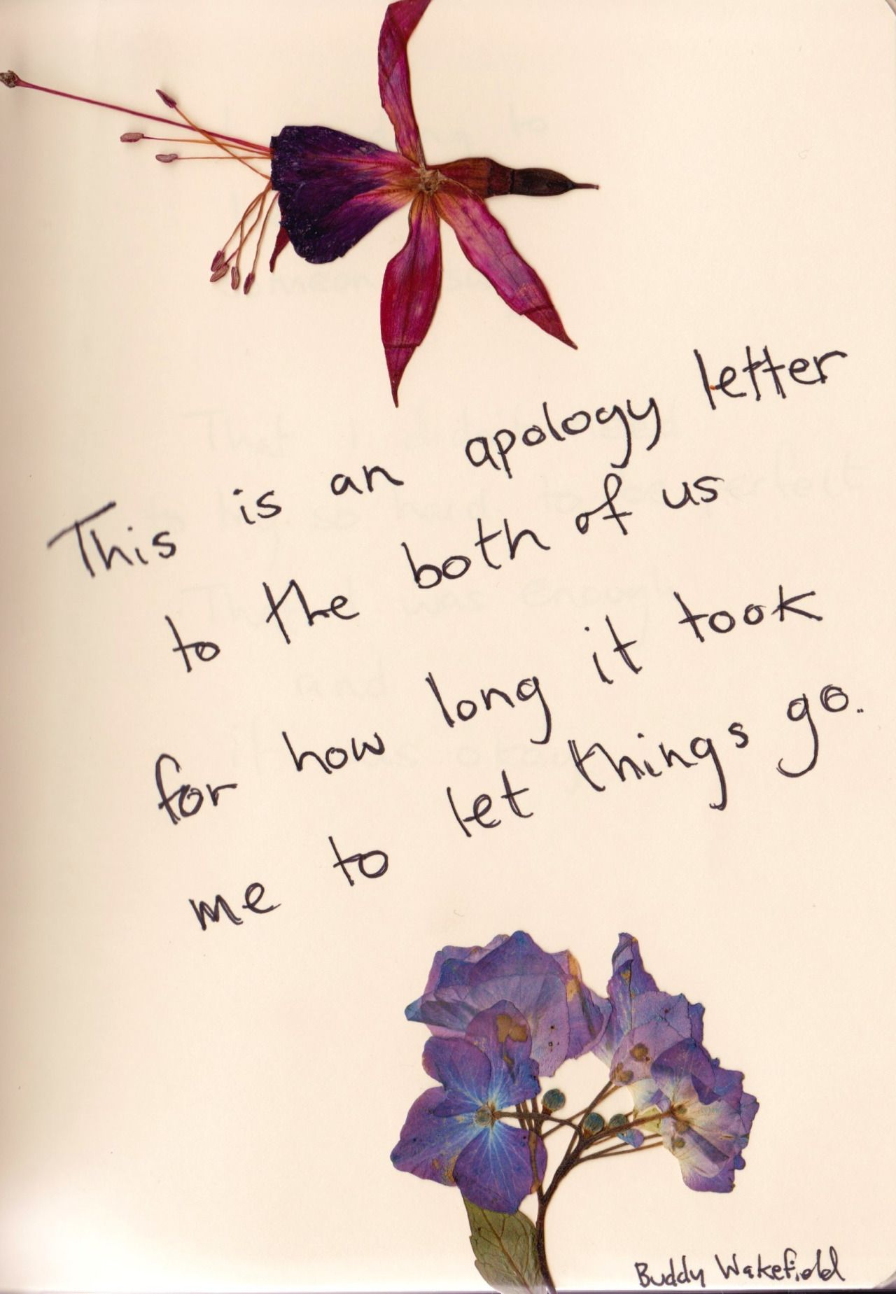 This Is An Apology Letter To Both Of Us For How Long It Took Me To