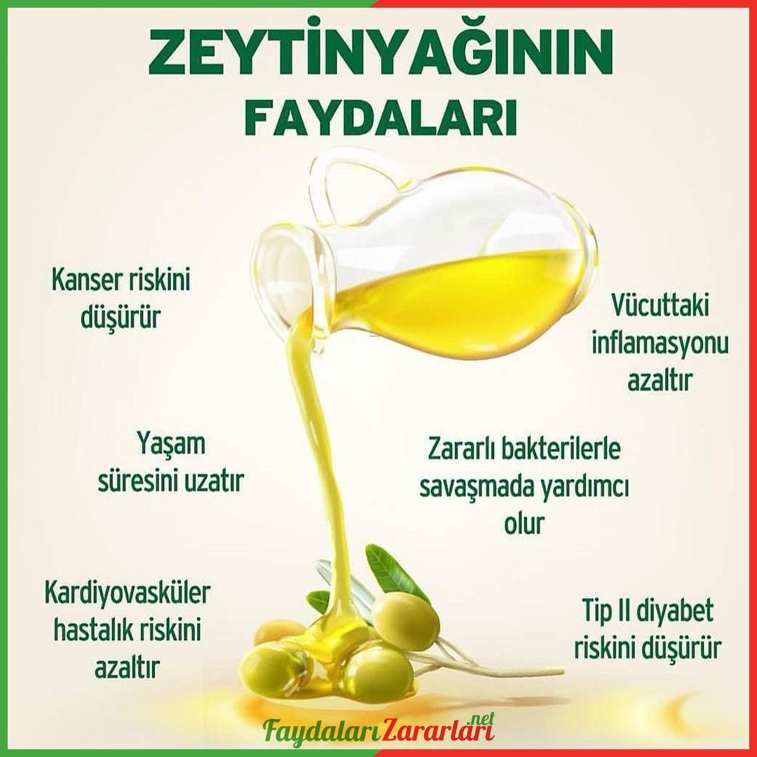 Zeytinyaginin En Cok Yetistirildigi Ve Tuketildigi Akdeniz