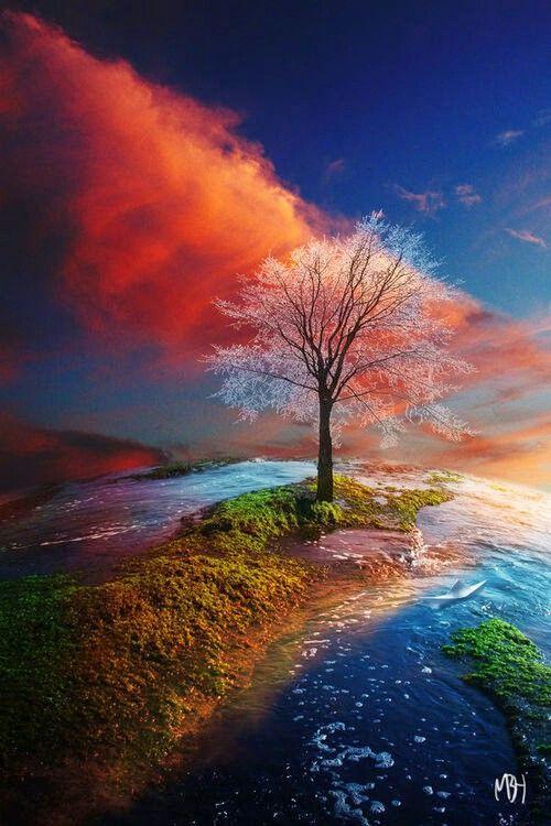 Beautiful Scene Beautiful Landscapes Landscape Photography Nature