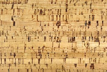 Learn How To Care For And Clean Your Cork Flooring Cork Flooring