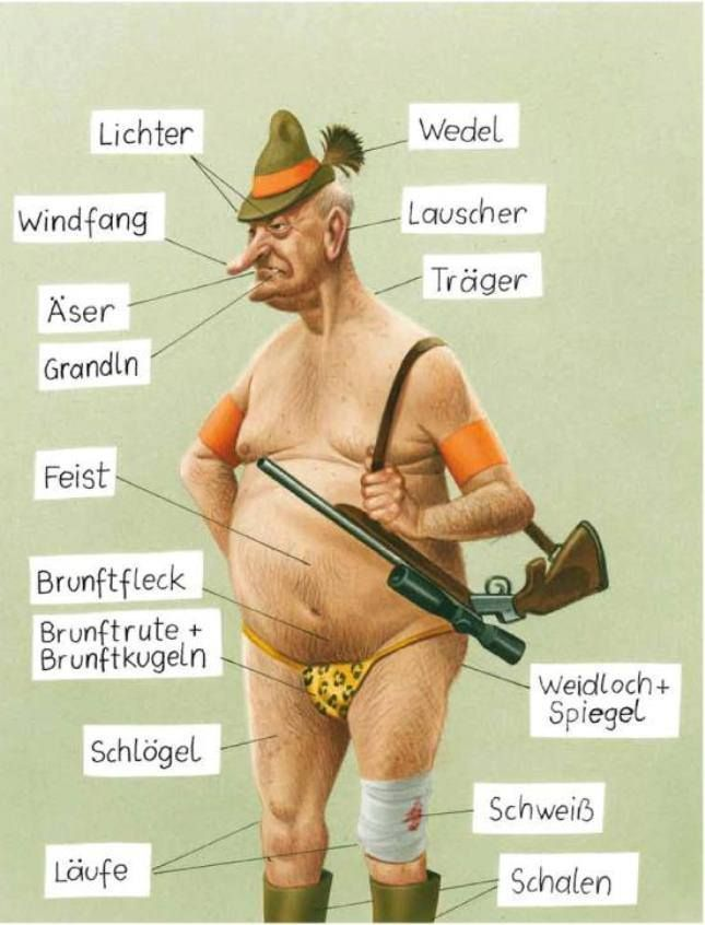Jagerlatein Lustige Spruche U Bilder Humor Funny Und Man Humor