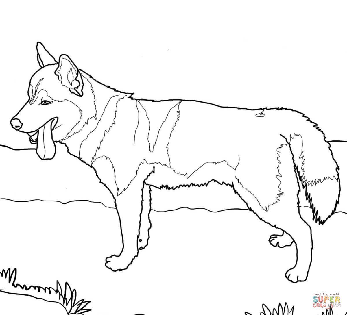 Realistic Dog Coloring Pages Fresh Coloring Printable Dog For Kids Tor Free Puppy In 2020 Dog Coloring Page Puppy Coloring Pages Husky Dogs