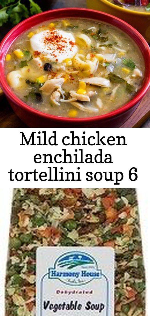 Milde Hühnchen-Enchilada-Tortellini-Suppe 6 #todieforchickenenchiladas #HühnchenEnchiladaTortelliniSuppe #Milde Mild chicken enchilada tortellini soup 6        Erleben Sie die Suppennacht mit diesem geschmackvollen Rezept für Enchilada-Tortellini-Suppe! Entwässerte Gemüsesuppe | Gemüsesuppe Mix | Harmony House Dies ist eine großartige Liste der besten Paleo-Suppen-Rezepte. Von klassischen, wohltuenden Suppen wie Tomatenbasilikum bis zu einfachen Rezepten wie Slow Cooker Chicken Tortilla S #todieforchickenenchiladas
