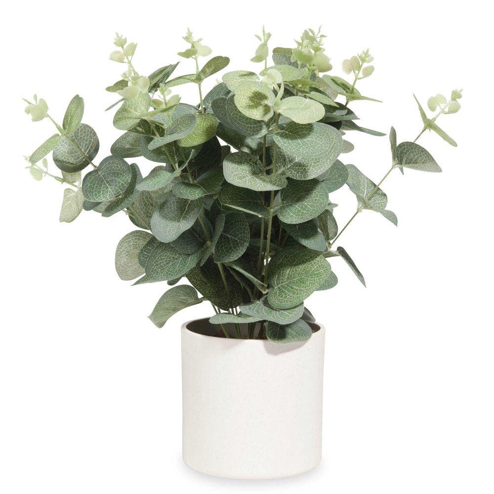 Pot d 39 eucalyptus artificiel wishlist d co - Branche d eucalyptus ...