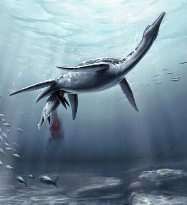 DeTodo.biz: El plesiosaurio daba a luz a sus crías vivas