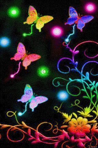 Beautiful Neon Butterflies - Bing Images | Butterfly ...