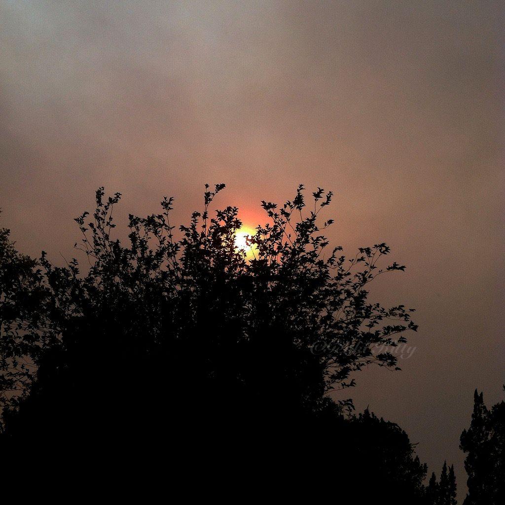 California Santa Clarita Fires 2016