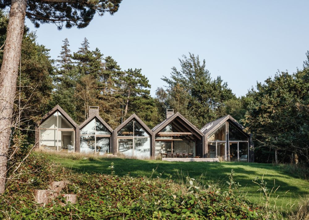 Five connected cabins in a forest clearing with a view of