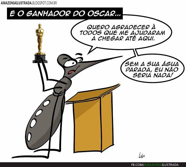 Amazônia Ilustrada: E o oscar vai...