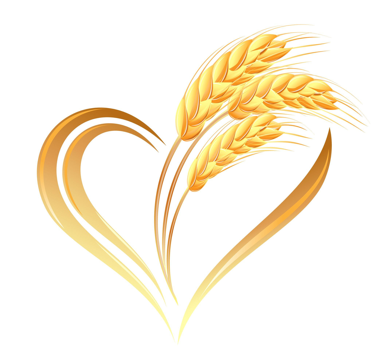 Логотип колосок картинки