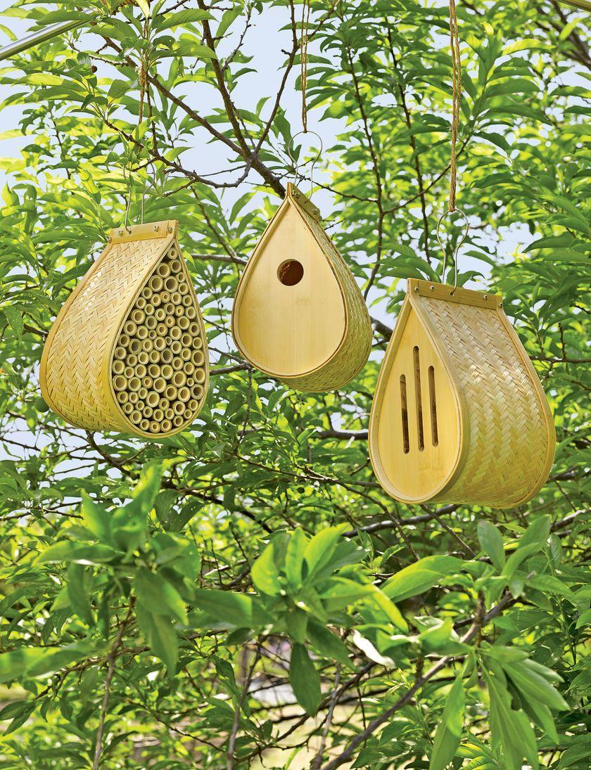 Bamboo Habitat Collection For Butterflies, Songbirds Mason Bees   Bee House  Gardens