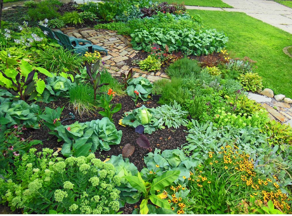 Edible landscape design landscaping design tagged for Edible garden designs