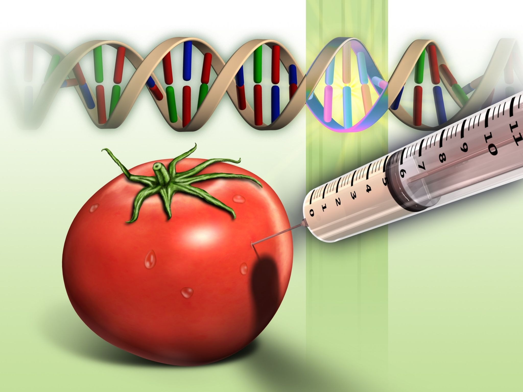 Genetically modified food background