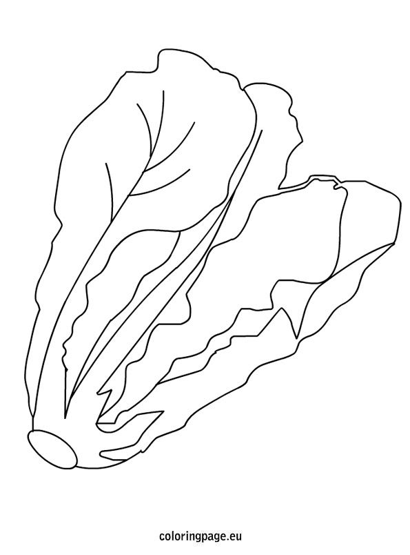 Spinach Coloring Page Coloring Pages Color Coloring Sheets