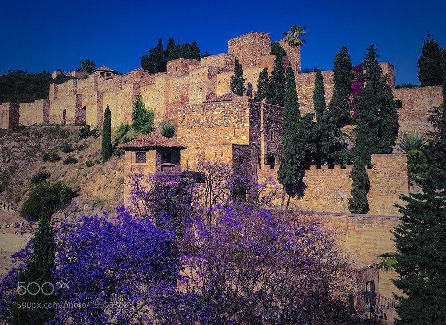 Alcazaba by castillocaparuas