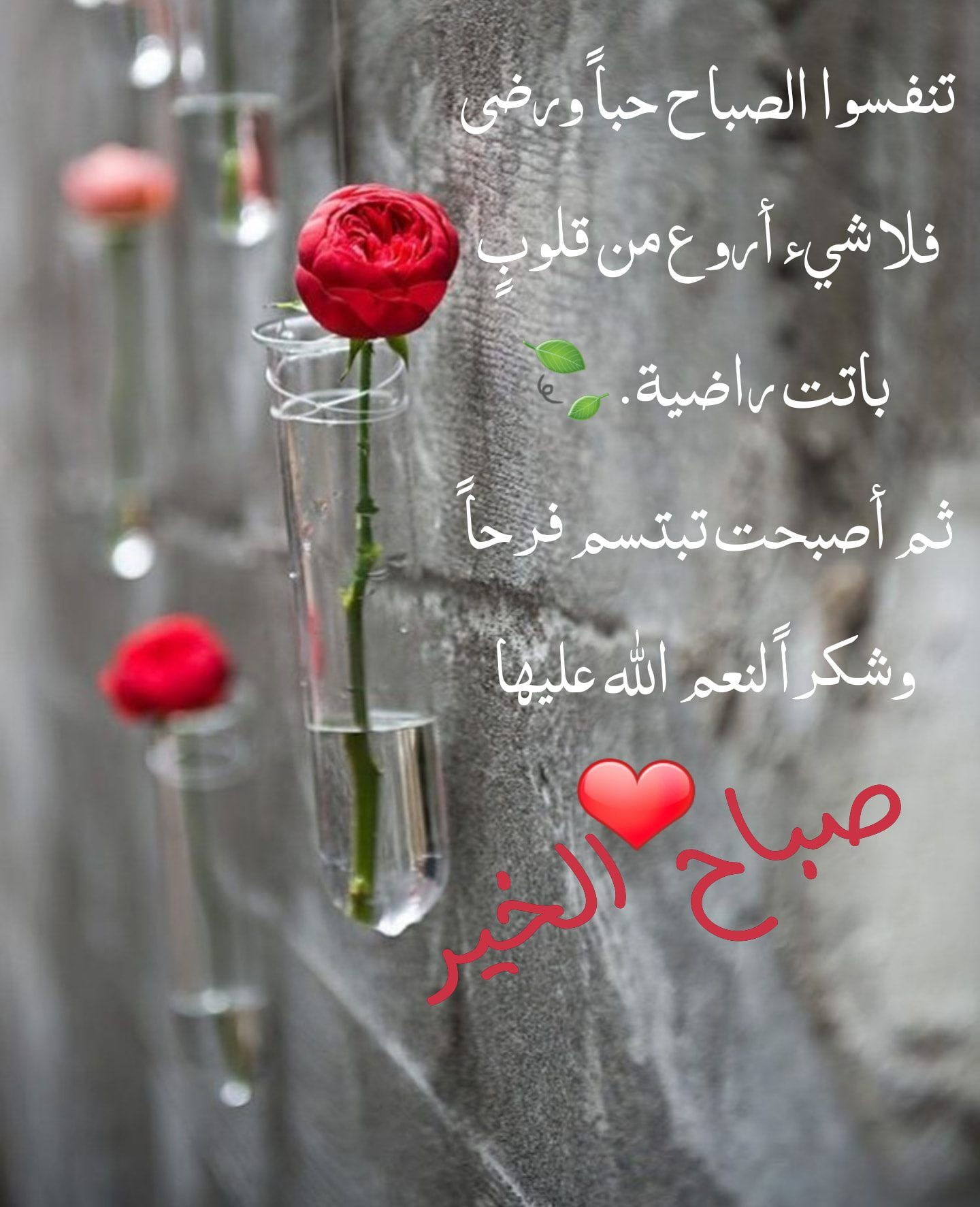 Pin By القيصر Abu Wesam On صباحكم ومسائكم دعاء Beautiful Morning Messages Good Morning Messages Morning Messages