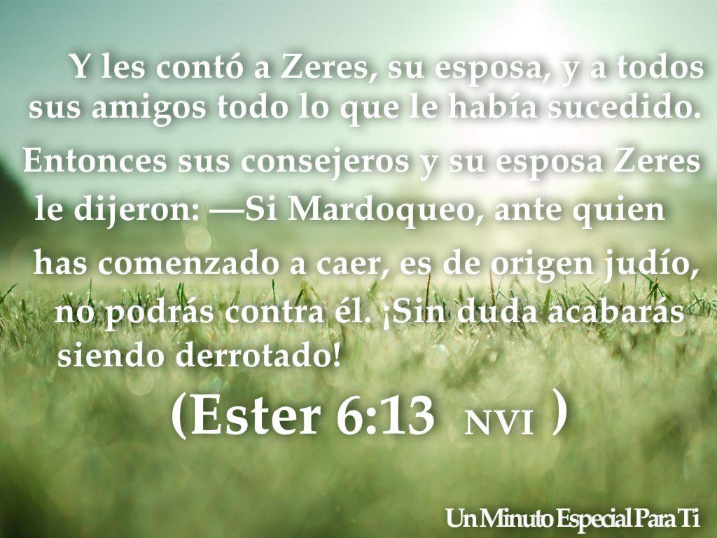 Ester 6:13