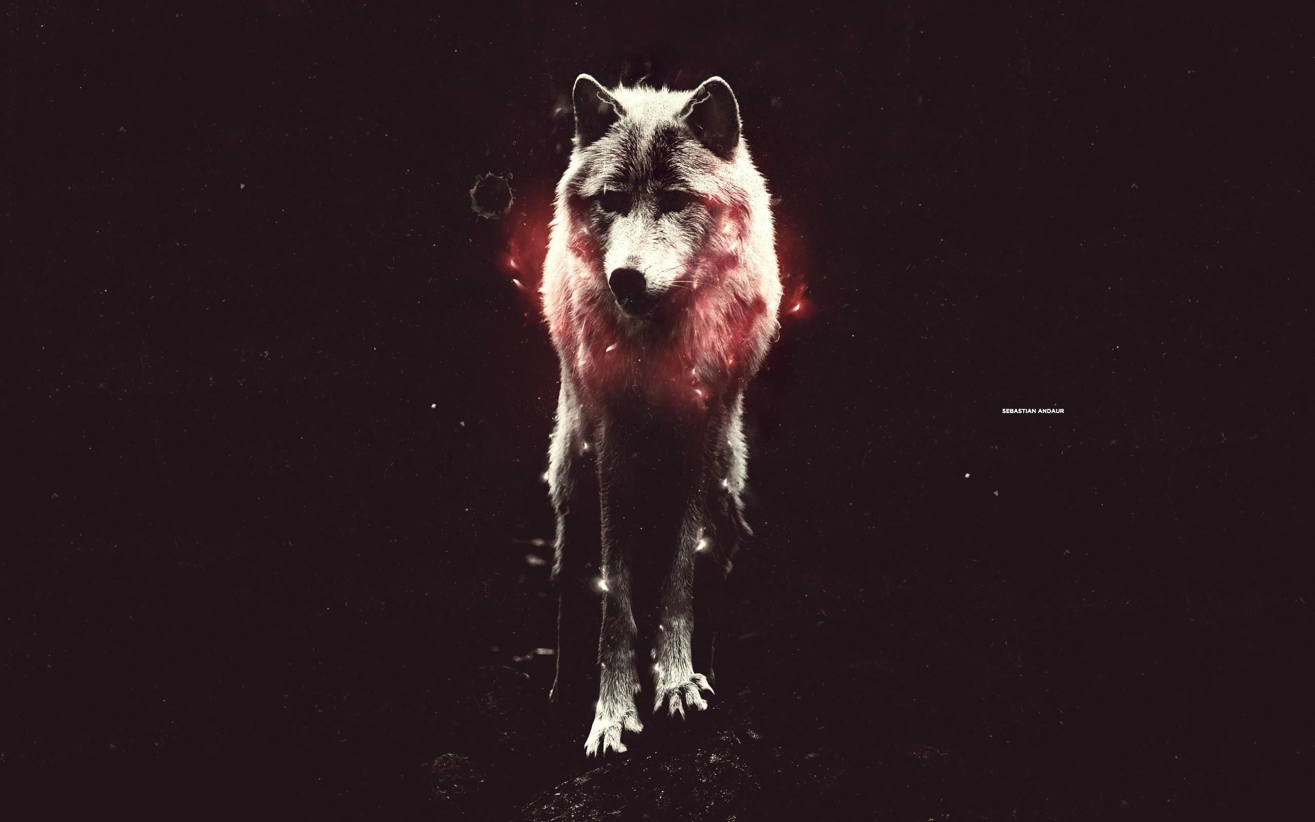 Wolf Hd Wallpapers 1080p Desktop Backgrounds Wolf Art Print Hipster Wallpaper Wolf Art
