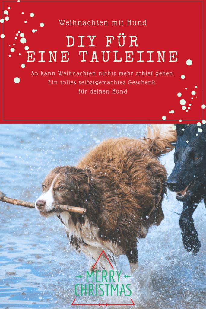 11. Dezember - Frau Alma | Weihnachten adventskalender, DIY und ...